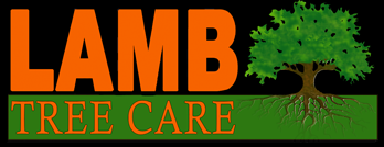 Lamb Tree Care Logo sarasota tree service
