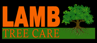 best tree service sarasota